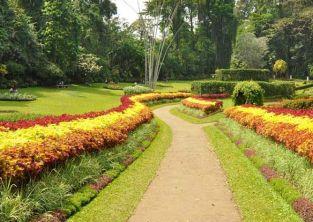 باغ گیاه شناسی چابهار