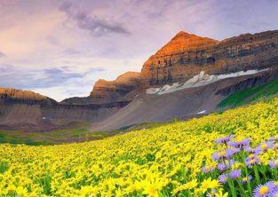 دره گلها ارمنستان