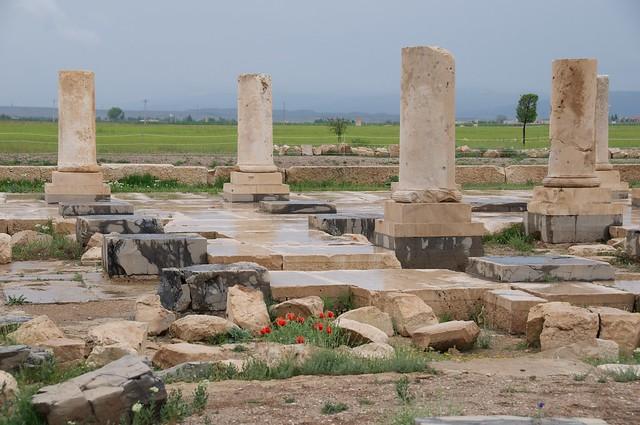 بقایای یکی از کاخ های کوروش در پاسارگاد
