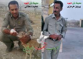 شهادت دو سرباز دفاع از طبیعت